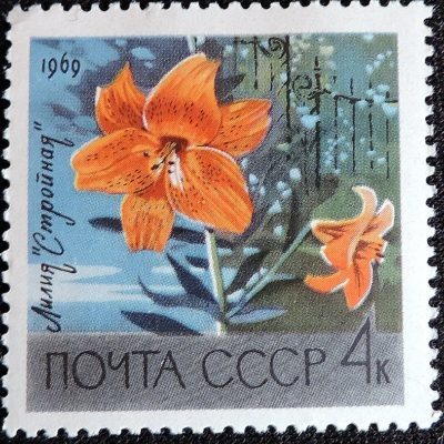 DSCN8915