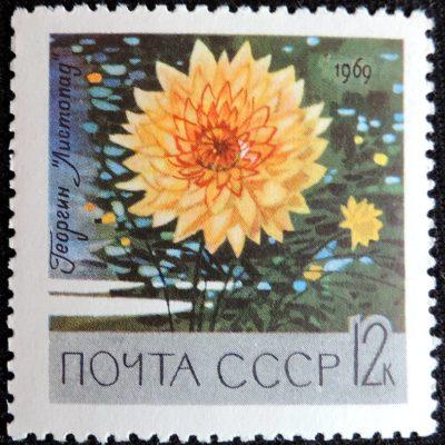 DSCN8919