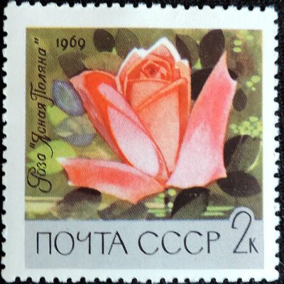 DSCN8922