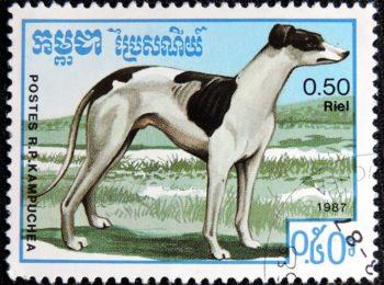 DSCN9483